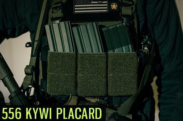 placard_thumb.png?auto=format,compress&w=600&fit=clip
