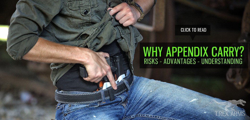 Appendix_Carry_Article_Slider